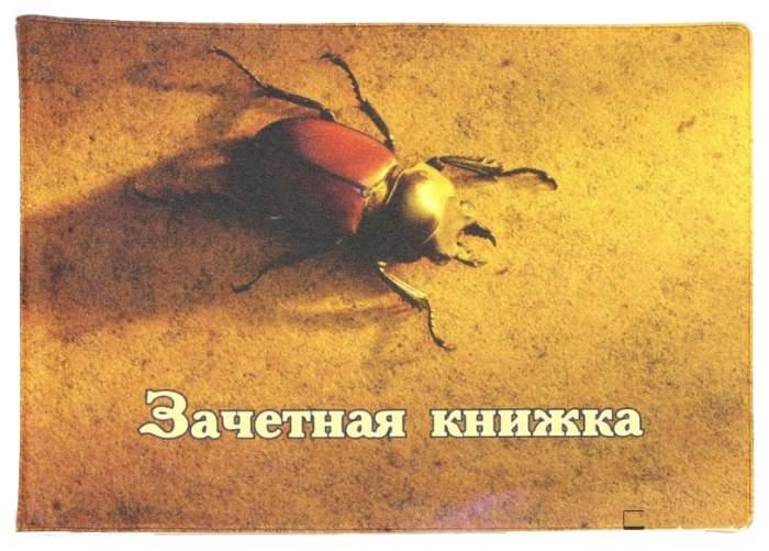 Обложка для удостоверений Символик Жук 042002обл290005