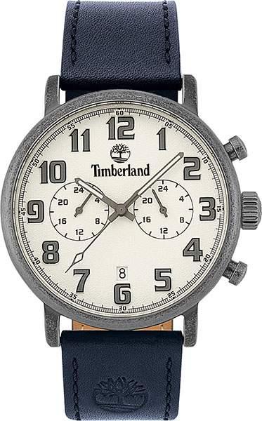 Наручные часы кварцевые мужские Timberland TBL.15405JSQS/04