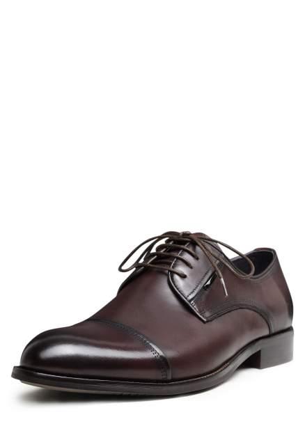 Туфли мужские Pierre Cardin 03407100 коричневые 43 RU