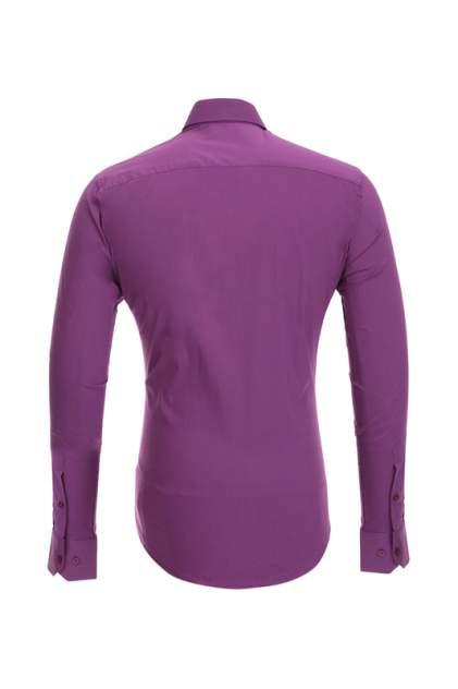 Рубашка мужская BAWER 1R00012-04 фиолетовая M