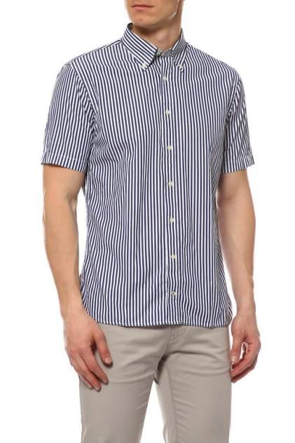 Рубашка мужская Tommy Hilfiger .0887832331 370, синий