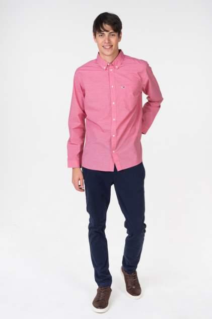 Рубашка мужская Tommy Hilfiger DM0DM05467 розовая 48