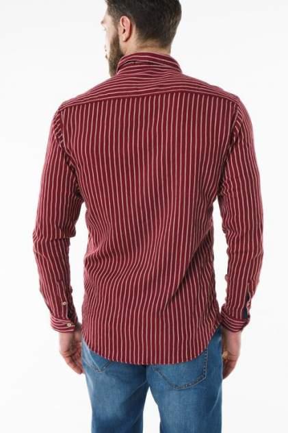 Рубашка мужская Sahera Rahmani 9011442-42 красная 56