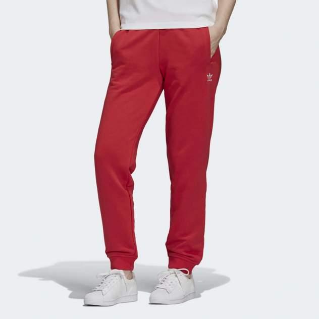Женские спортивные брюки Adidas GD4299, красный