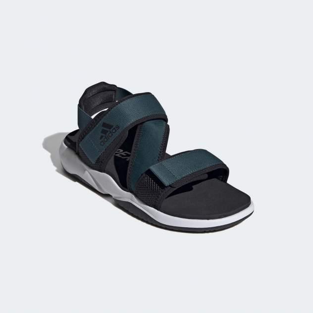 Мужские сандалии Adidas Terrex Sumra, синий