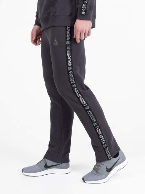 Спортивные брюки мужские Великоросс BM серые 48 RU