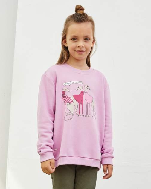 Свитшот детский BARMARISKA ''Левретки Vogue'' розовый 134-140