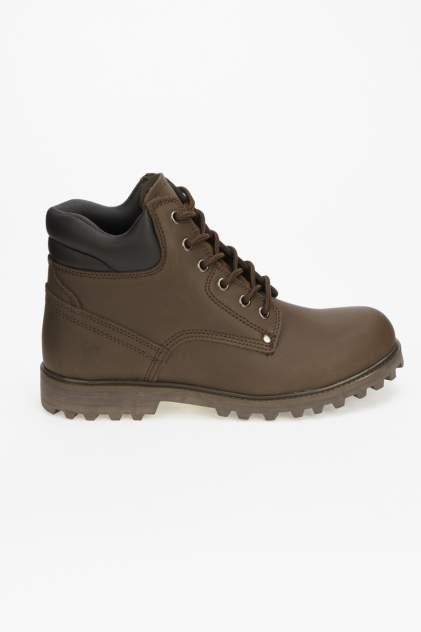 Мужские ботинки Ascot FR 2687 003 STAMFORD, коричневый