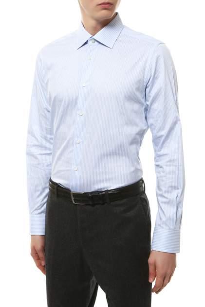 Рубашка мужская Windsor 10004170_435_30007170 голубая 43 DE