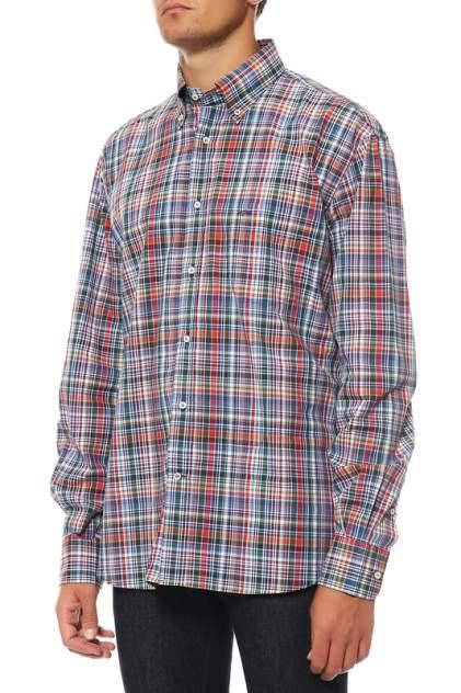 Рубашка мужская Paul & Shark I14P1359 черная 40 IT