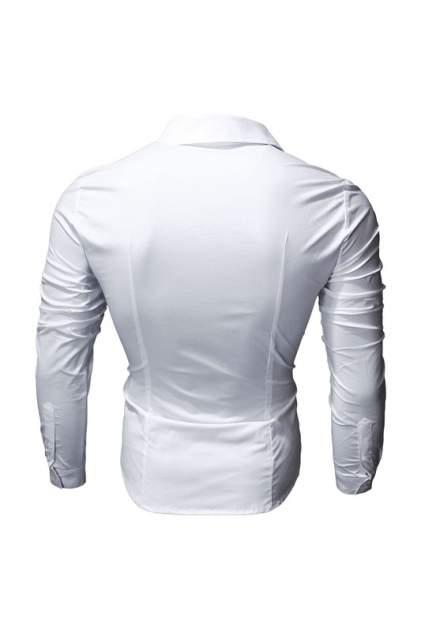 Рубашка мужская Envy Lab R53/БЕЛая белая S