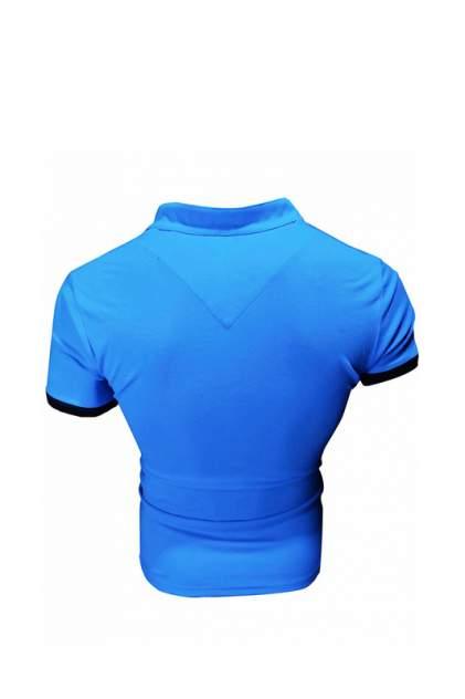 Футболка-поло мужская Envy Lab BY1 голубая 5XL
