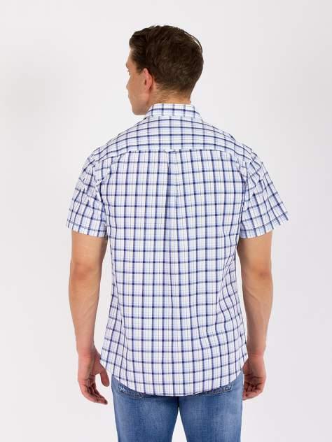 Рубашка мужская DAIROS GD81100421 голубая 6XL
