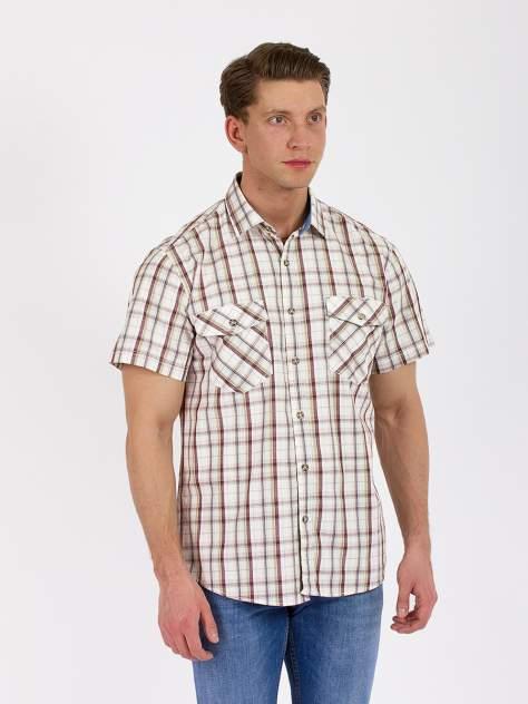 Рубашка мужская DAIROS GD81100421 коричневая 6XL