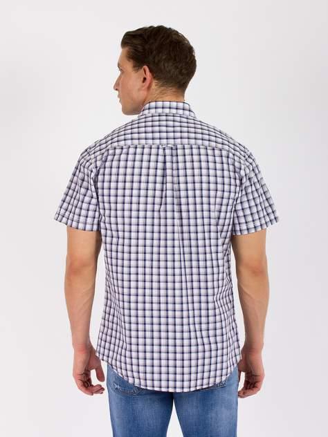 Рубашка мужская DAIROS GD81100424 синяя 5XL