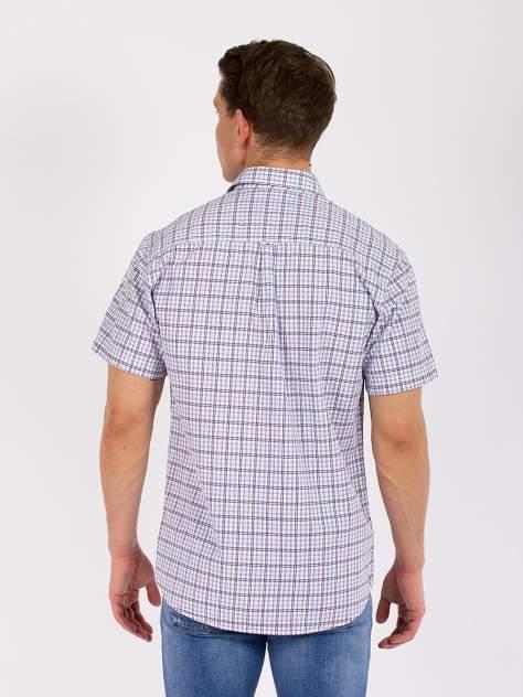 Рубашка мужская DAIROS GD81100424 голубая 4XL
