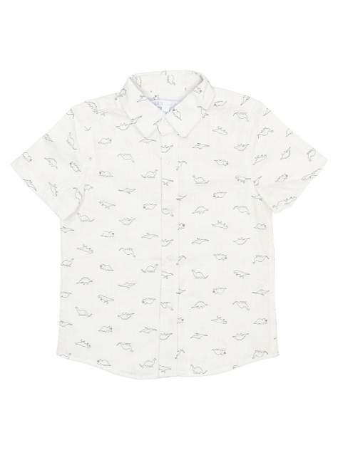Рубашка Modis M201K00922O070K07 р.116
