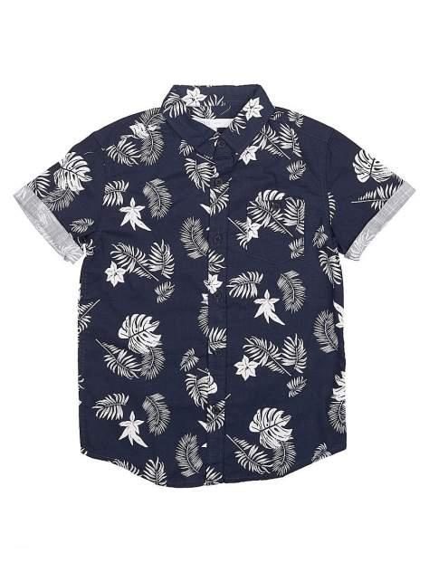 Рубашка Modis M201K01139P553K14 р.158