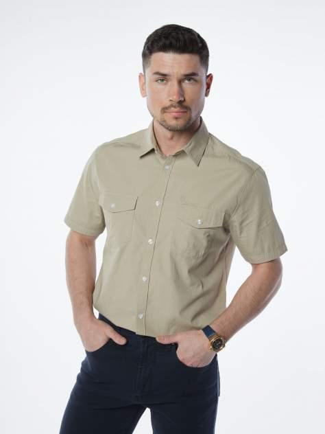 Рубашка мужская Velocity V48-26MS-06 бежевая L
