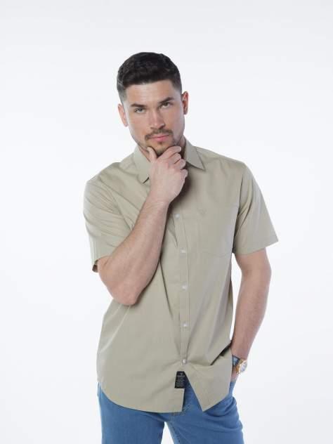 Рубашка мужская Velocity V258-26MS-06 бежевая XXL