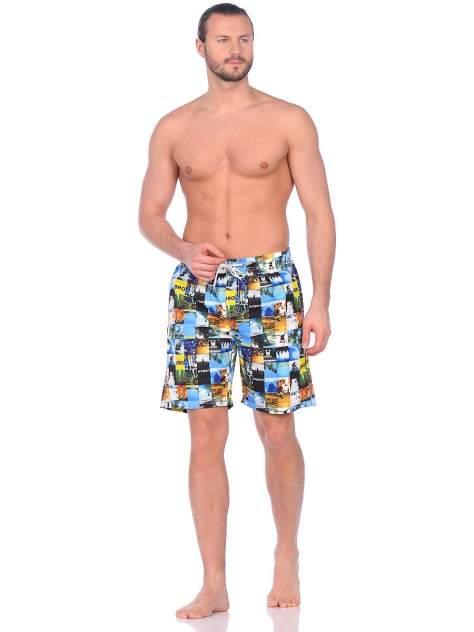 Шорты для плавания мужские Modis M201U00444 разноцветные 52 RU