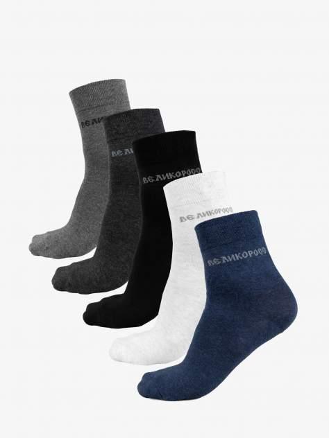 Подарочный набор носков унисекс Великоросс PNN516 разноцветный 41-44