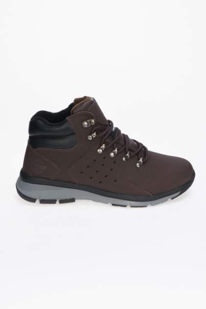 Мужские ботинки Ascot ASC 006 003 SURVIVOR, коричневый