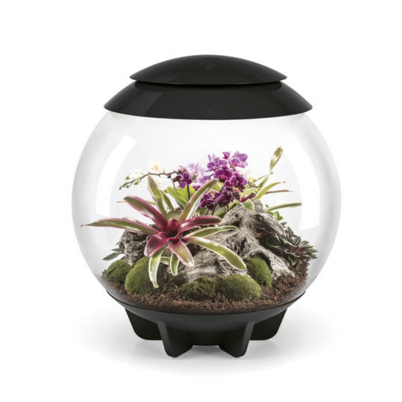 Флорариум для растений biOrb AIR 60 Black,