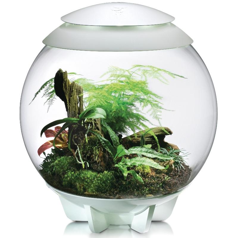 Флорариум для растений biOrb AIR 60 White,