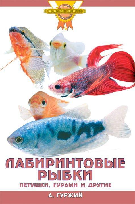 Лабиринтовые рыбки. Петушки, гурами и другие (цвет. )