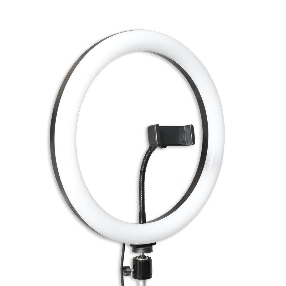 Кольцевая лампа Fujimi FJL RING12, 31