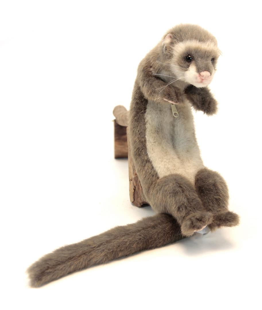 Купить Домашний хорек Hansa 28 см 5589, Мягкие игрушки животные
