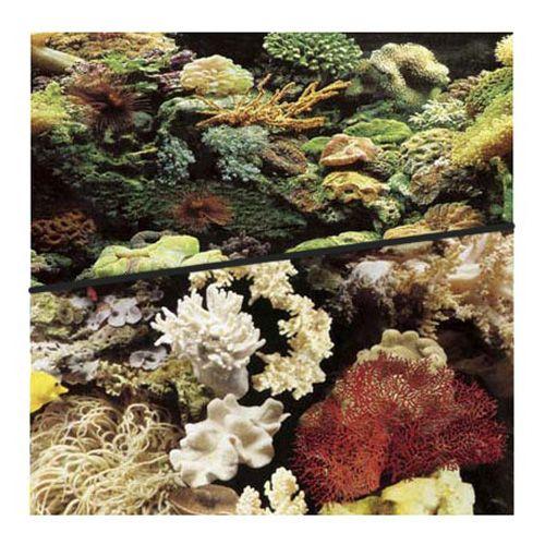 Фон для аквариума Hagen двухсторонний рифовый/рифовый 45см