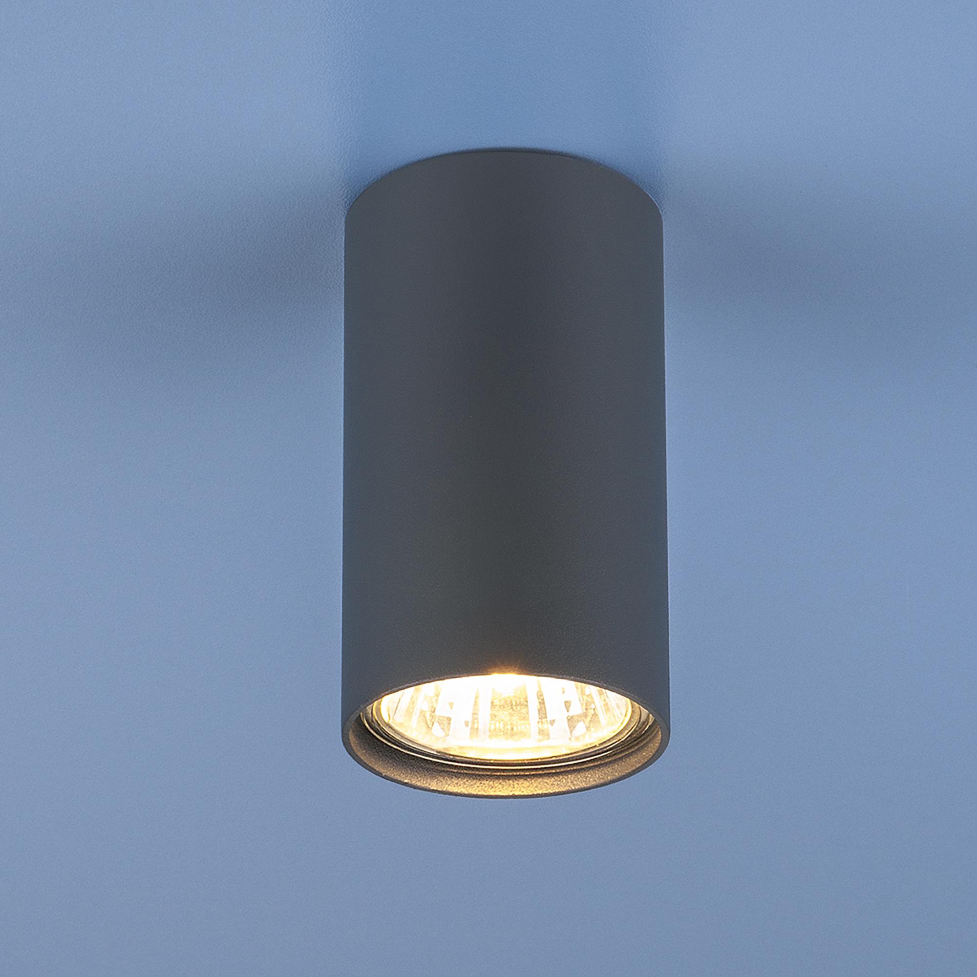 Потолочный светильник Elektrostandard Серия 1081 5256 фото