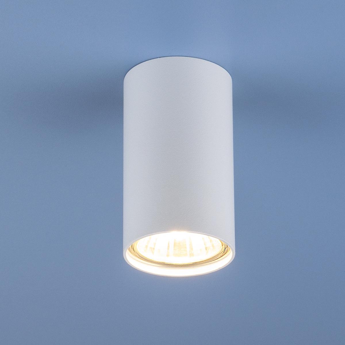 Потолочный светильник Elektrostandard Серия 1081 5255 фото