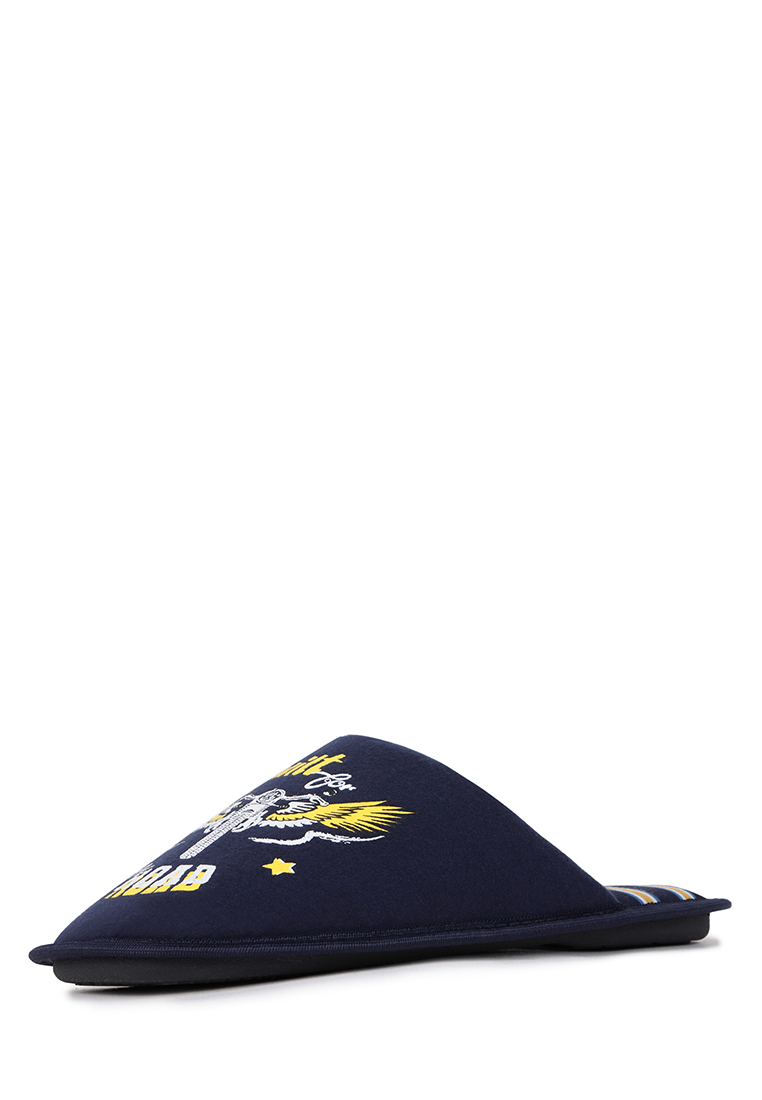 Домашние тапочки мужские T.Taccardi CJI20AW 27 синие