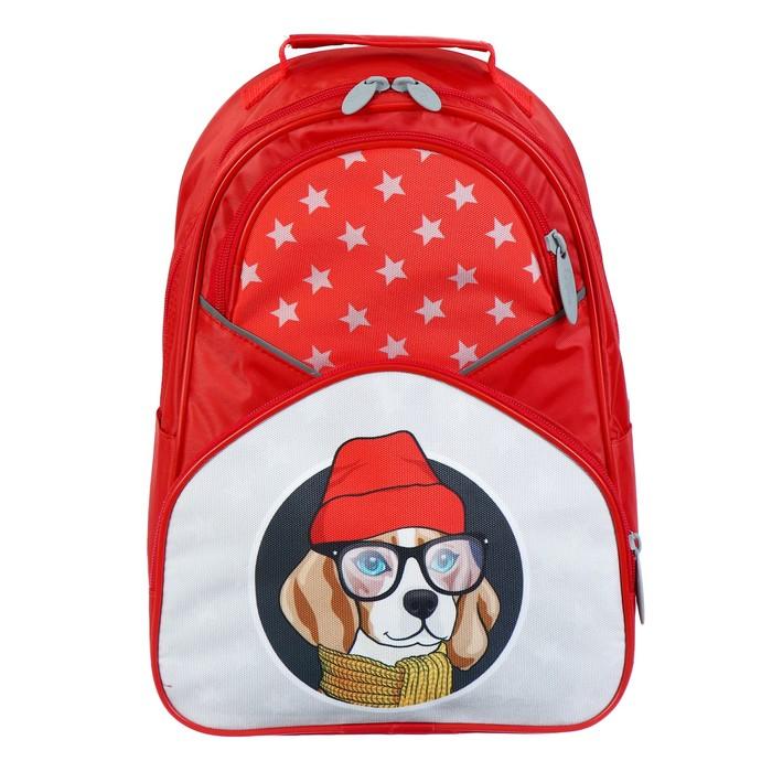 Купить Рюкзак школьный Calligrata Пес, 37х26х13 см, Школьные рюкзаки для девочек