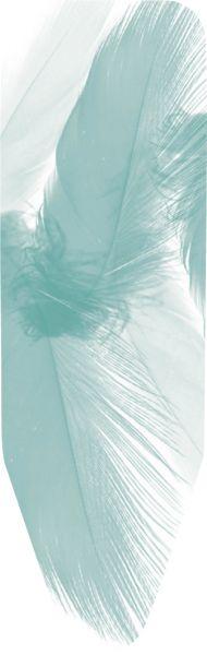 Чехол для гладильной доски Brabantia PerfectFit Перья