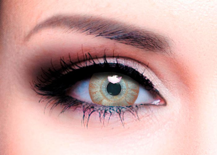 Купить Ophthalmix Butterfly, Цветные контактные линзы Офтальмикс Butterfly 2 шт. PWR -5, 00, R 8.6, Brown