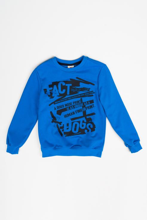 Толстовка для мальчика Button Blue, цв.синий, р-р 152