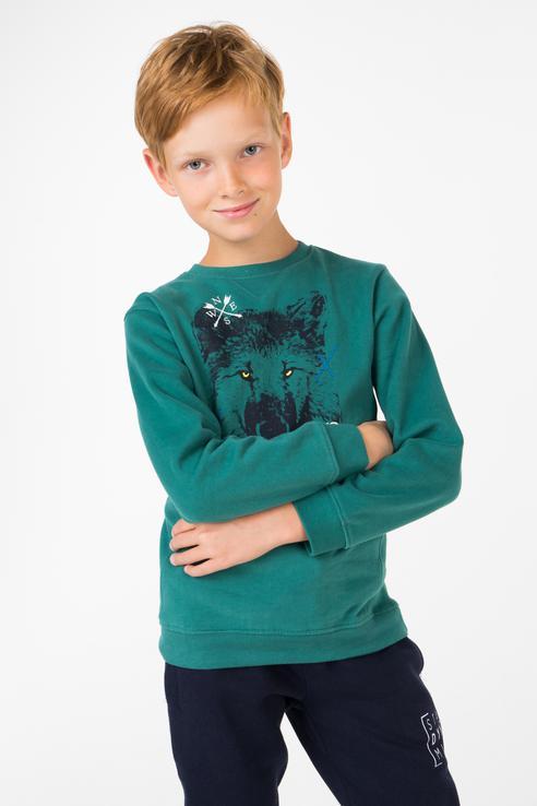 Толстовка для мальчика BAON, цв.зеленый, р-р 110 BK618503