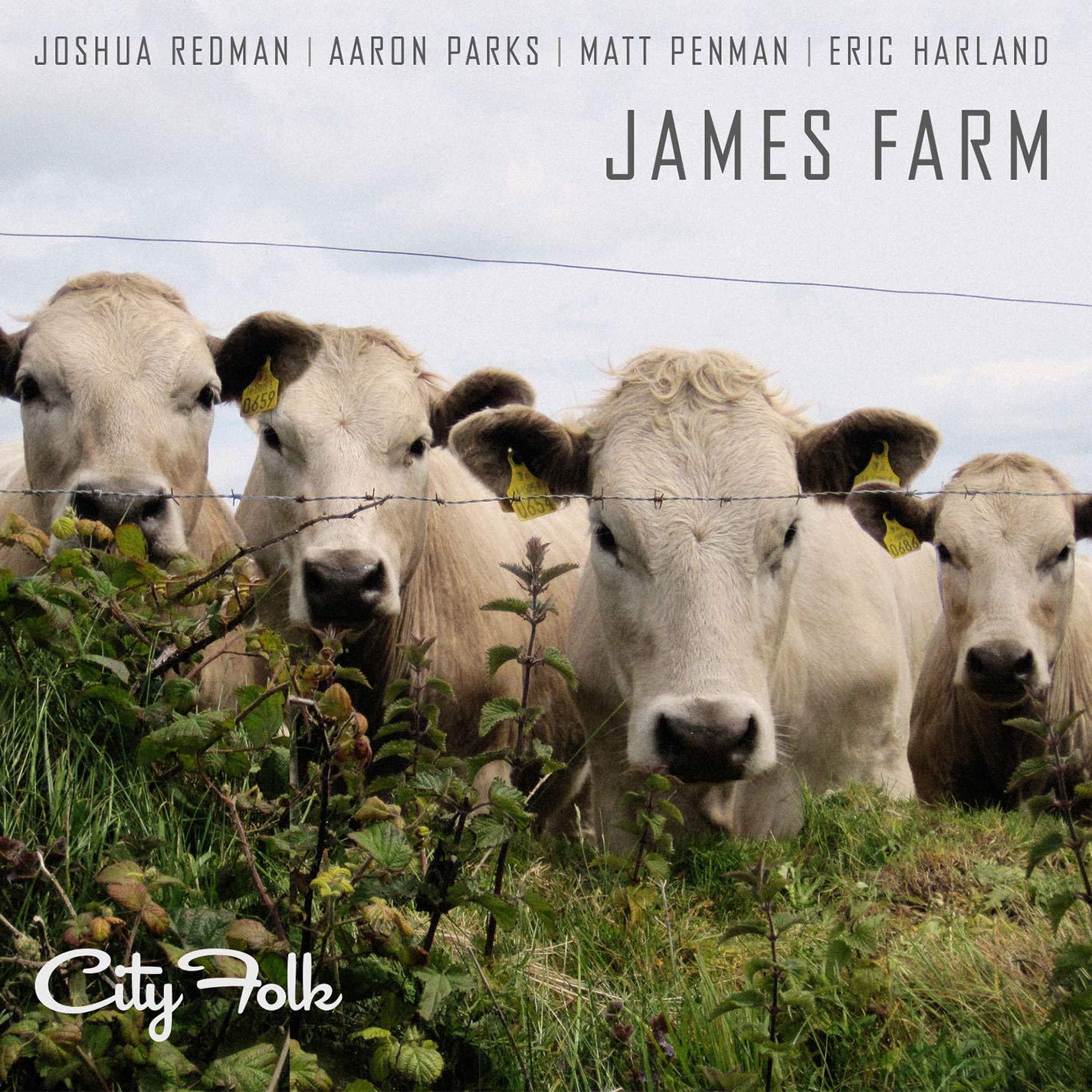 James Farm City Folk Мистерия Звука