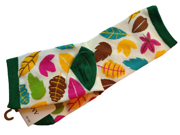 Носки женские AMIGOBS Amigobs_10 разноцветные 35-40