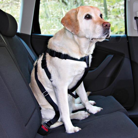 Ремень безопасности для собак TRIXIE, автомобильный, обхват