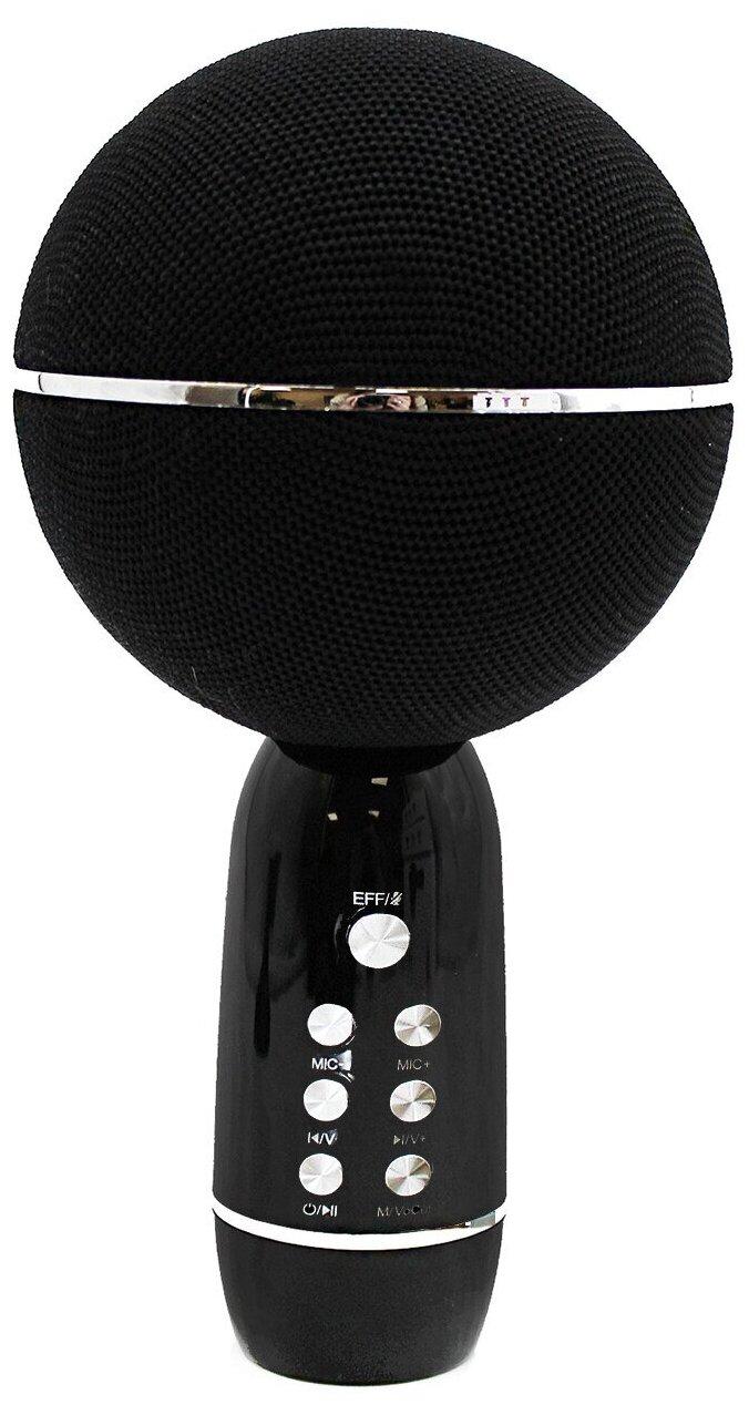 Микрофон Family Shop Black