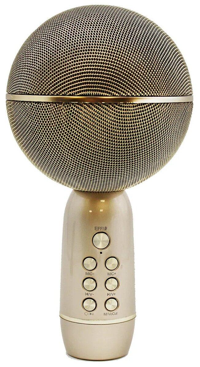 Микрофон Family Shop Gold