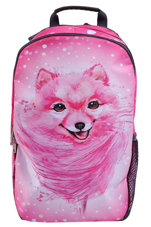 Купить NP25/19-M, Рюкзак для девочек BagRio цв.розовый,