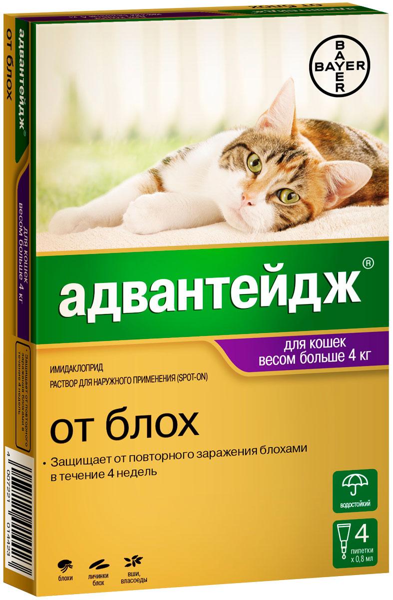 Капли для кошек весом более 4