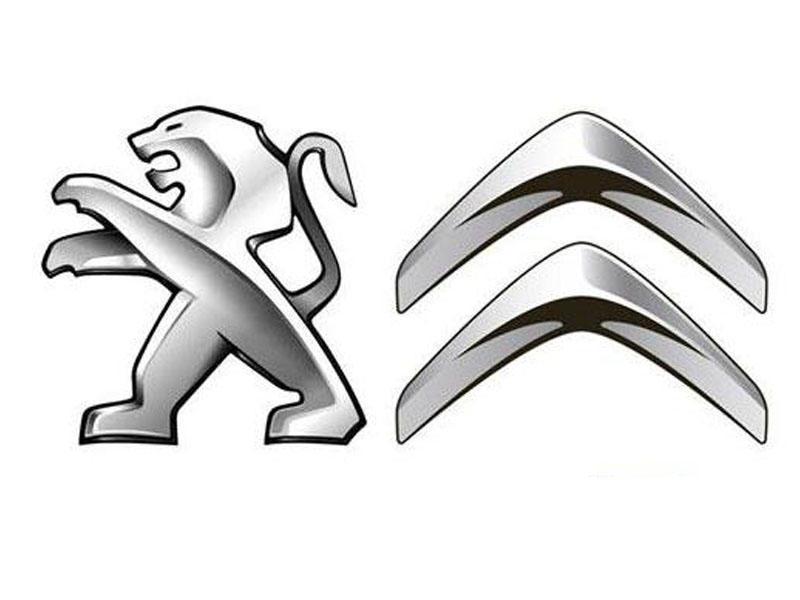 Колпачок ступицы колеса Peugeot Citroen с эмблемой