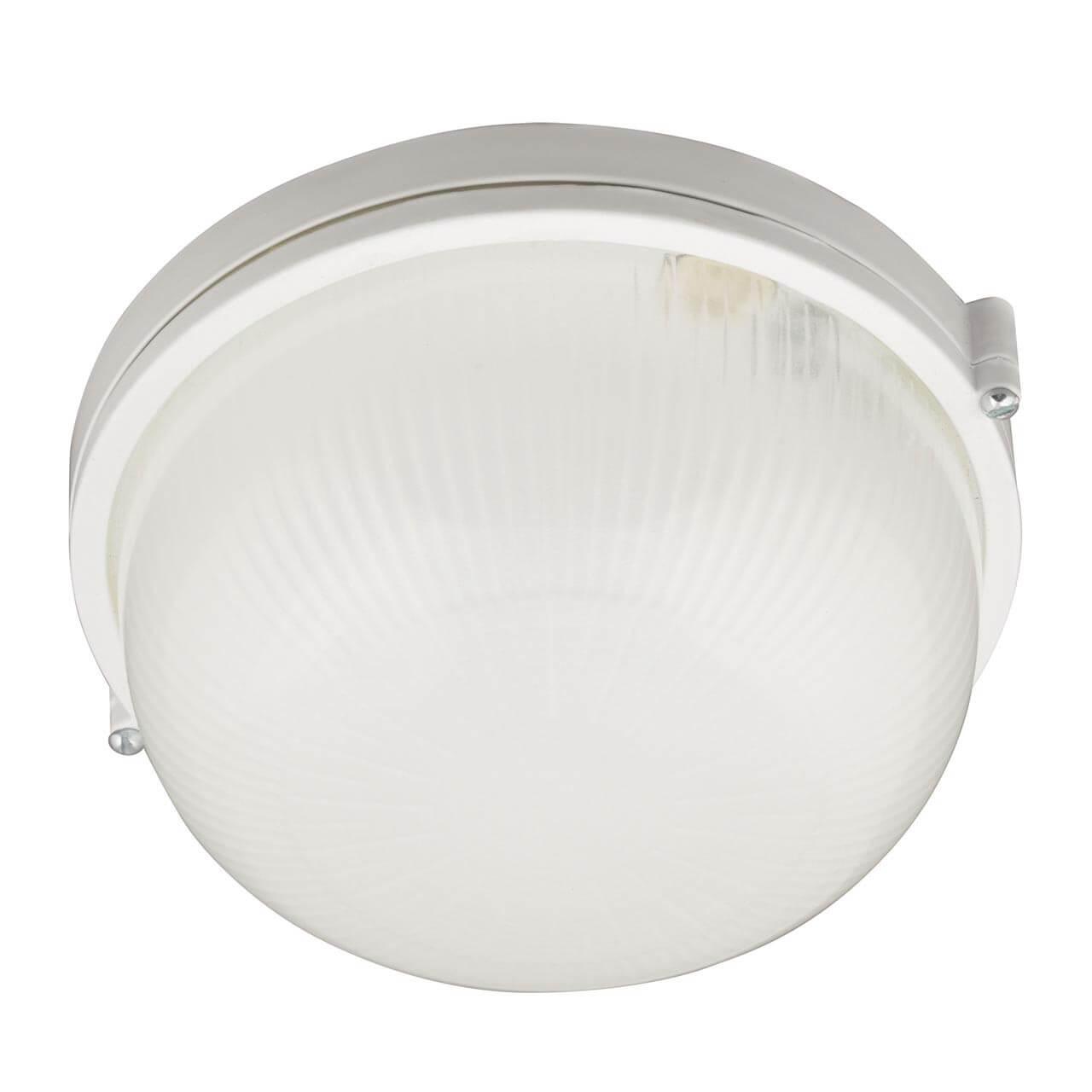 Потолочный светильник Uniel UWL R01 100W/E27 IP54
